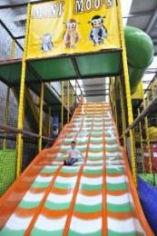 Slide At Mini and Maxi Moos Adventure Land Farm DH7 6EY