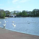 The Boating Lake At South Marine Park South Tyneside